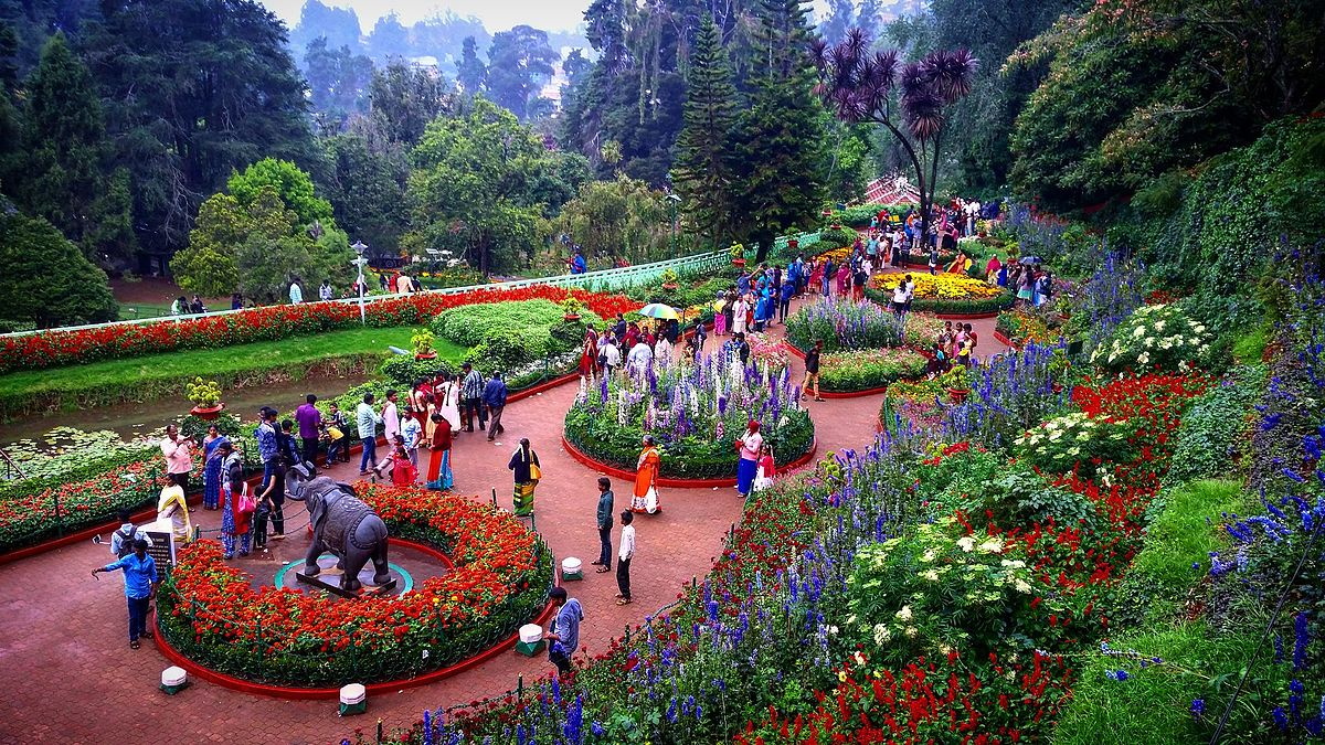 Best Places to visit in Ooty, Things to do, Timing and much more