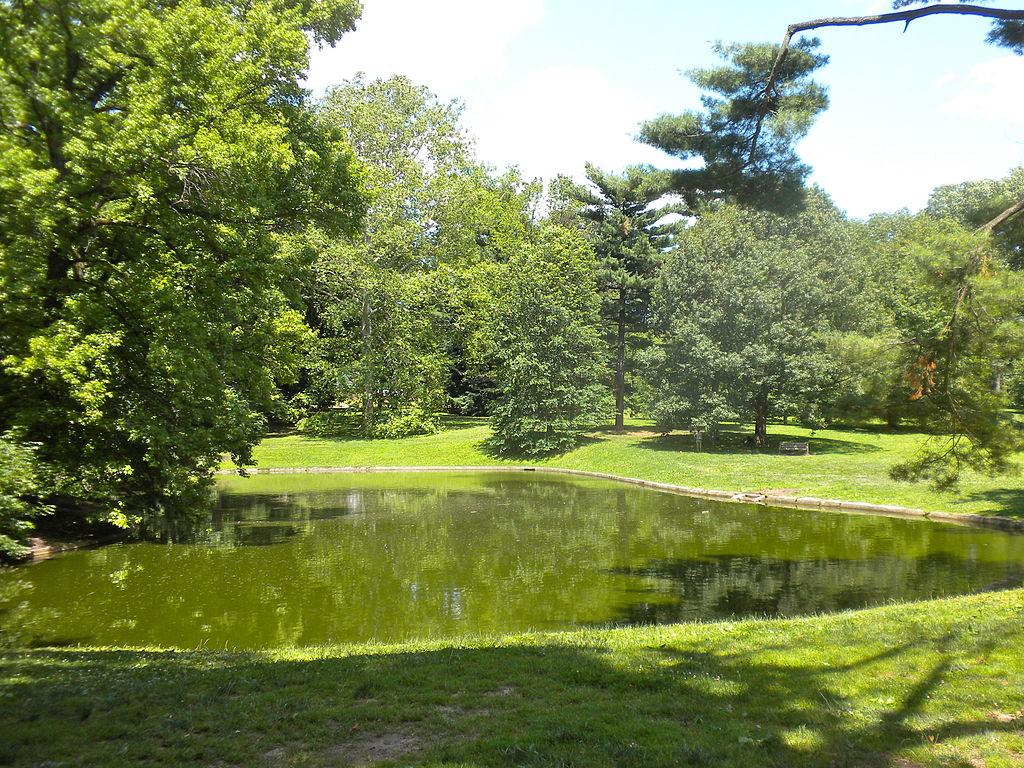 Polo Park